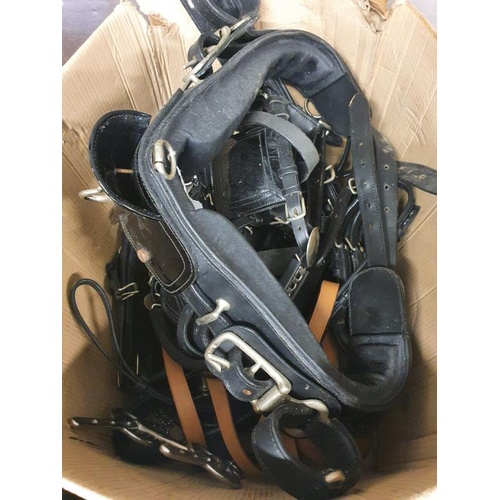 32 - Collection of Leather Horse's Harness...