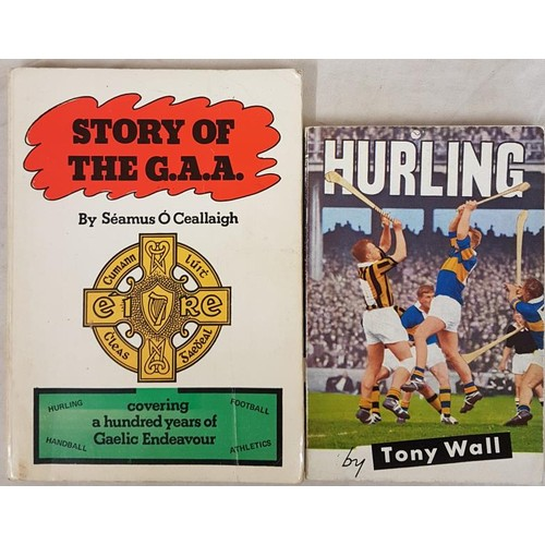 32 - <em>Story of the G. A. A.</em> by Seamus O'Ceallaigh. A History Book and Reference for Gaels. Wellbr...