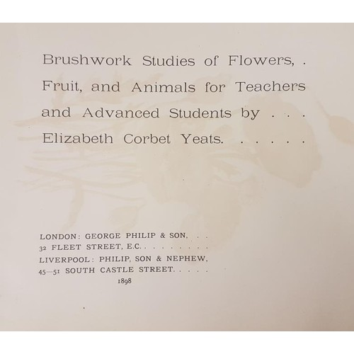 22 - <em>Brush-Work Studies of Flowers, Fruit and Animals</em> by Elizabeth Corbet Yeats. London, George ...