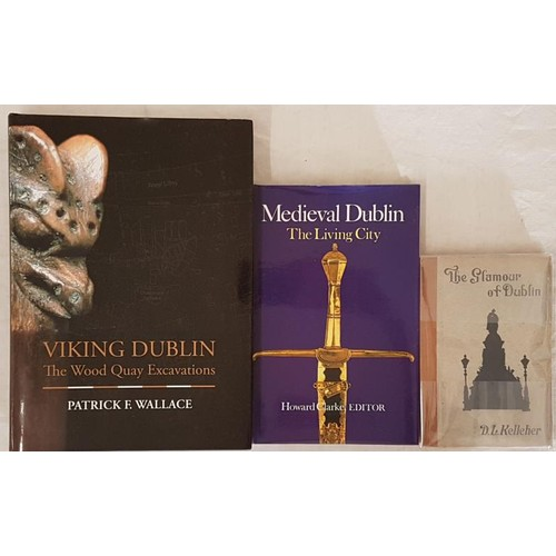 18 - Wallace, Patrick F. <em>Viking Dublin The Wood Quay Excavations.</em> Irish Academic Press, 2016, dj...