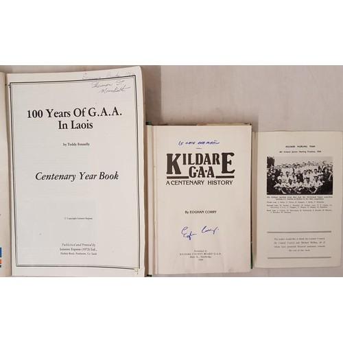 14 - Kildare & Laois G.A.A. - <em>Kildare Gaelic Athletic Association 1887-1975; Kildare G.A.A. A Cen...
