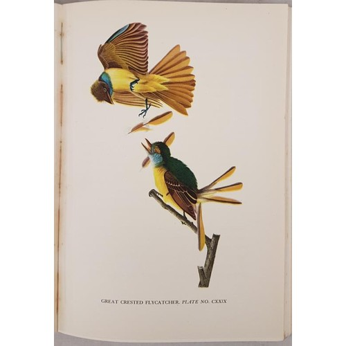172 - C. Rourke. Audubon. 1936. 1st. Fine coloured bird plates drawn from original Audubon prints....