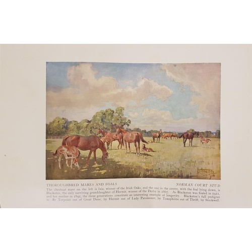 60 - Lionel Edwards. Sketches in Stable and Kennel. 1936. Folio. Coloured hunting plates.