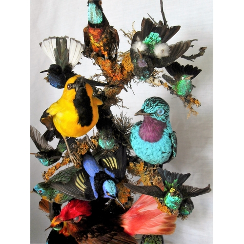 140 - A Victorian taxidermy group of exotic birds, 22 approx., under original glass dome on an oval base, ...