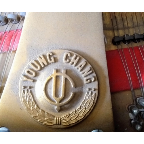 22 - A Young Chang 5ft 9in Model G175 grand piano in a bright ebonised case on square tapered legs in ver...
