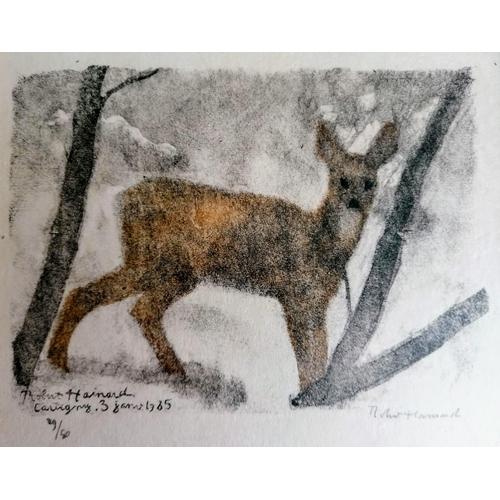 34 - Robert Hainard (1906-1999), CHEVRETTE A LA TOMBE DE LA NUIT, woodblock print, signed twice, dated an...