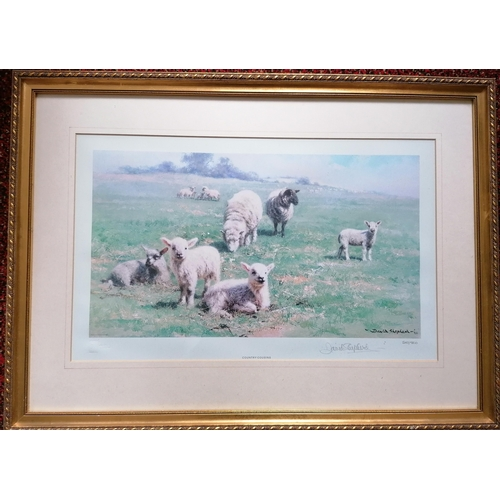 36 - David Shepherd (b.1931), COUNTRY COUSINS, limited edition colour print, published by Solomon & White...