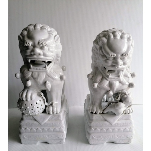 94 - A pair of early 20th century Chinese blanc de chine Foo dogs, each 40 cm H, without visible damage o...