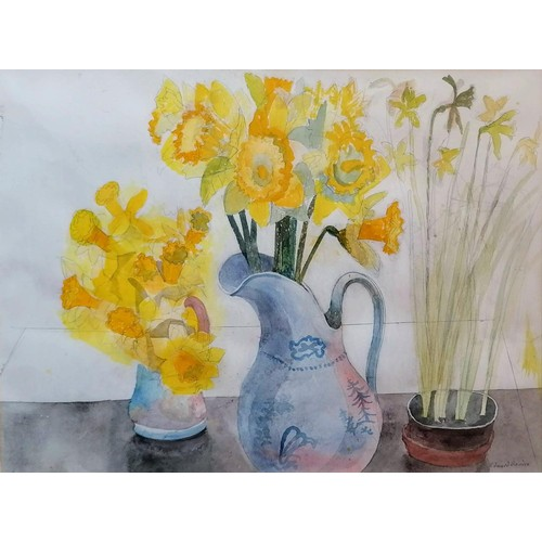 265 - Edward Bawden RA (1903-1989) DAFFODILS, pencil and watercolour, signed bottom right in pencil, in or...