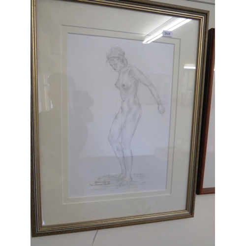 42 - A SKETCH BY GORDON HURLEY TITLED - THE SKINNY DIPPER...