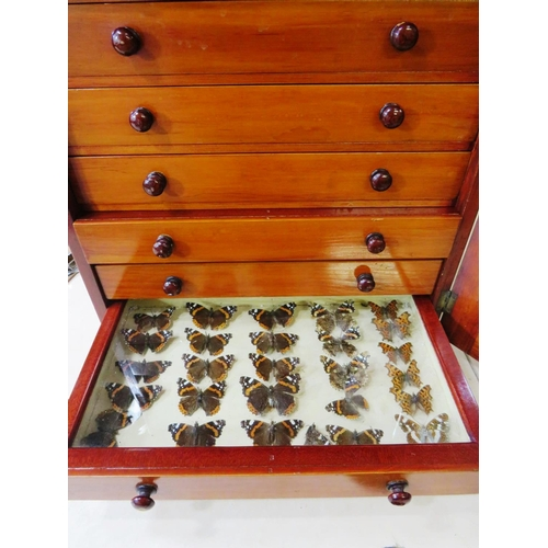 481 - VINTAGE EIGHT DRAWER SPECIMEN CABINET STOCKED WITH BUTTERFLIES...
