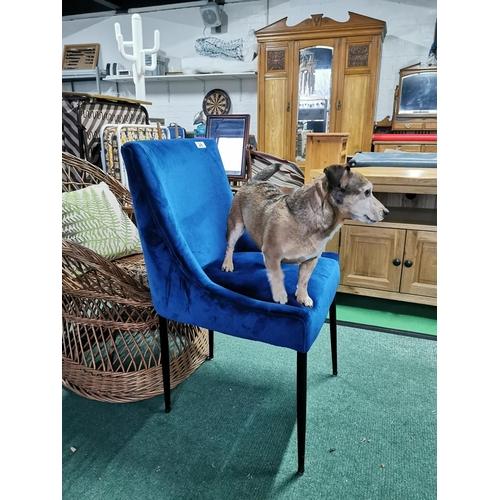 28 - Blue Velor Upholstered Chair On Black Metal Stick Legs
