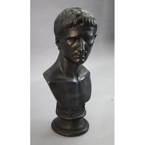 42 - <B>D. Brucciani & Co of London. An ebonised plaster bust of Augustus,</b></i> with integral socle, <...