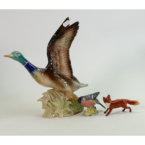 11 - Beswick Bullfinch 1042 & small fox: together with Dutch large pottery model of mallard in fight(3)