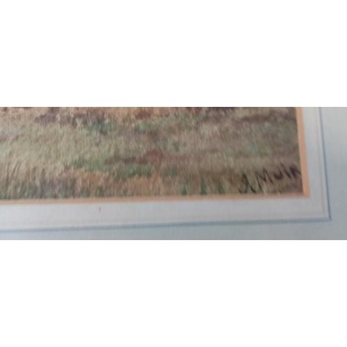 10 - Framed Watercolour 'Wheatfields'