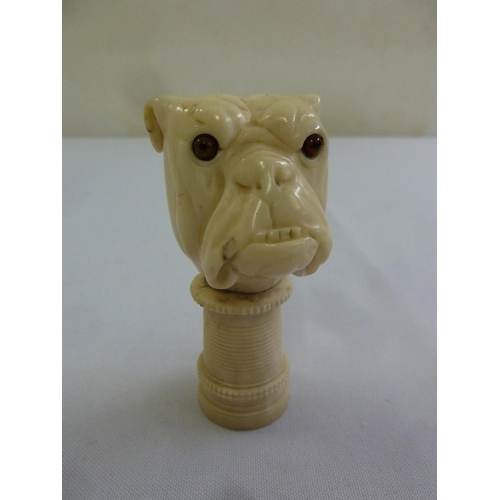 220 - A carved composition umbrella handle in the form of a bulldog...