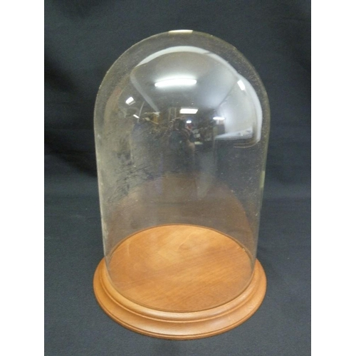230 - A glass display dome on circular wooden base...