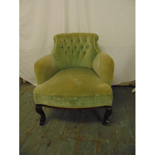 40 - An early 20th century mahogany upholstered tub chair on scroll legs...
