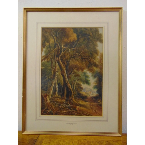 56 - William Turner (of Oxford) 1782-1862 framed and glazed watercolour of a forest, 48 x 34cm...