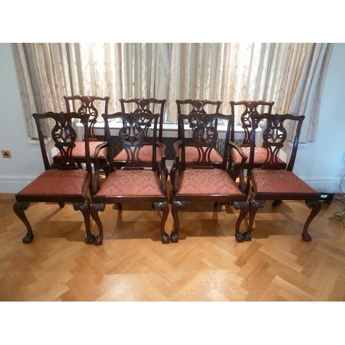 40 - Eight mahogany Chippendale style dining chairs to include two carvers...