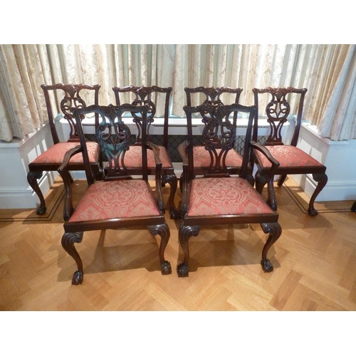 41 - A set of six mahogany Chippendale style dining chairs to include two carvers...
