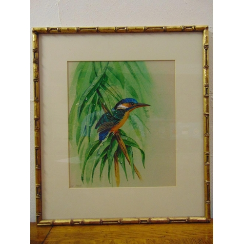 59 - Dean Fairbrass framed and glazed watercolour of a Kingfisher on a branch, signed bottom left, 29.5 x...