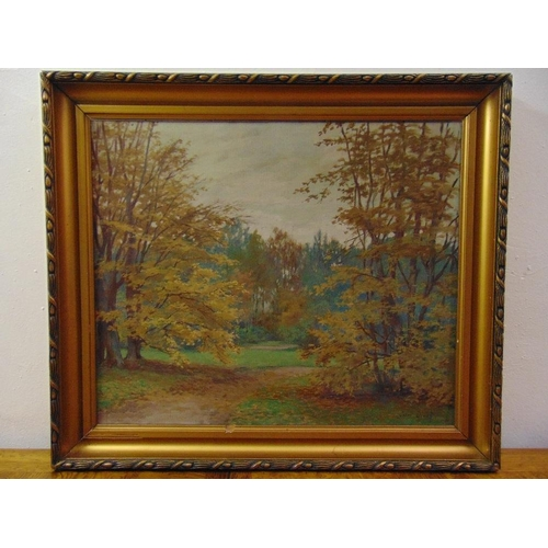 80 - Jan Divis framed oil on canvas of a country landscape, signed bottom right, 50.5 x 61cm...