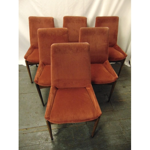 24 - Robert Heritage for Archie Shine six rosewood upholstered dining chairs, A/F, CITES certificate incl...