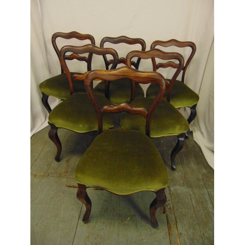 10 - A set of six Victorian rosewood balloon back upholstered dining chairs on cabriole legs...