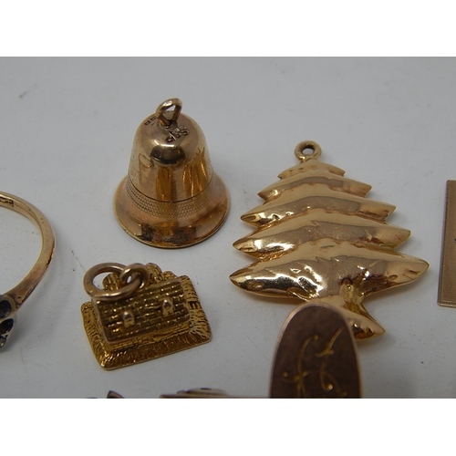 19 - Quantity 9ct Gold Jewellery Including Charms & Bracelet. Gross weight 20.5g...
