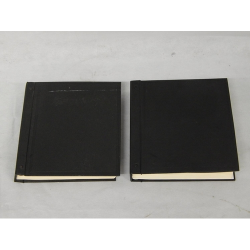 Two Postage Stamp Albums Containing a Huge Collection of World Stamps