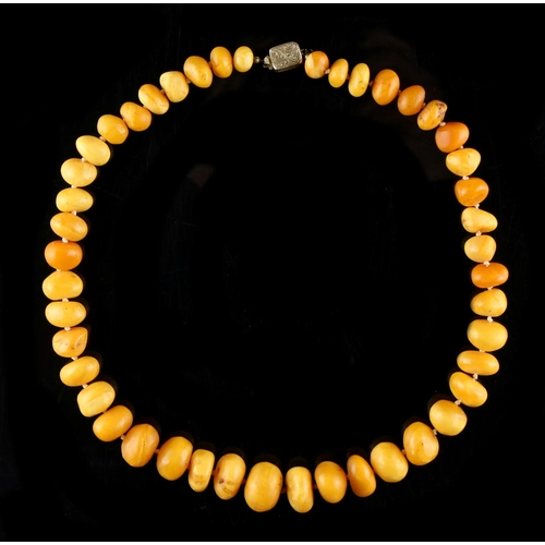 19 - Property of a deceased estate - a butterscotch amber graduated pebble bead necklace, the largest of ...