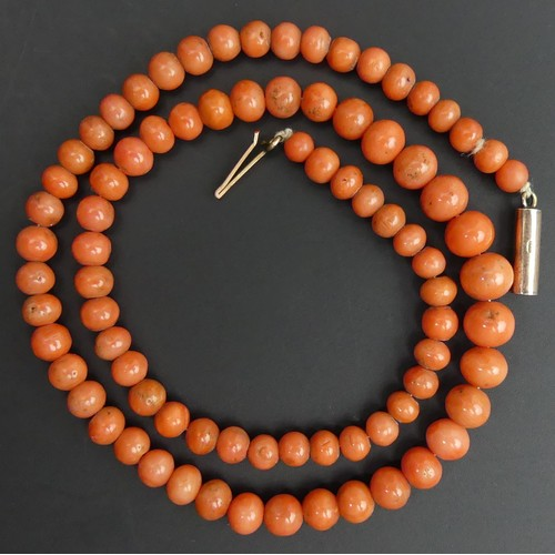 15 - Victorian graduated coral bead 40 cm long necklace with a 9 carat gold clasp. Largest bead 7.5mm. UK...