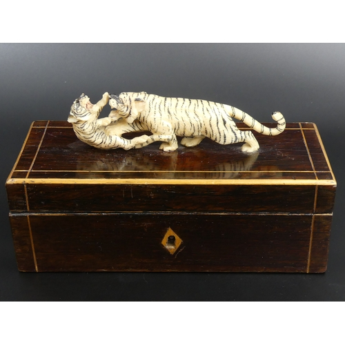 32 - Victorian rosewood, boxwood strung jewellery box, surmounted with a finely carved ivory tiger group....