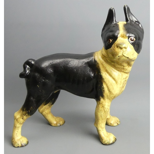 196 - A cast iron figure of a Boston Terrier. 25 cm high. UK Postage £20.
