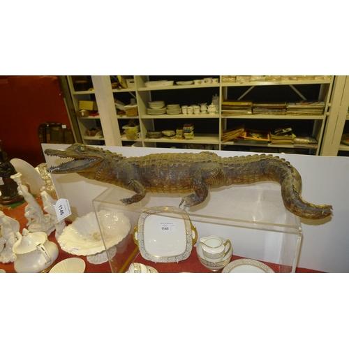 1146 - A vintage stuffed crocodile...