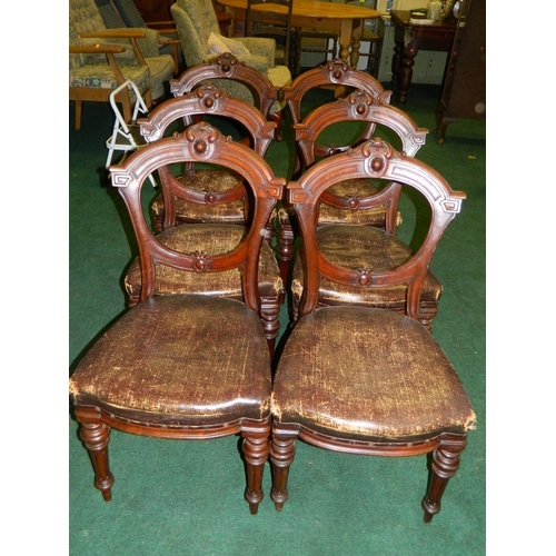 243 - 6 19th century carved ballon backed chairs with studded black leather seats...