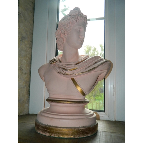 261 - Bust of Apollo with gold leaf paint...