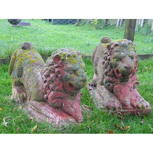 264 - Pair of stone lion statues...
