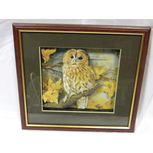 426 - Framed 3D Owl picture...