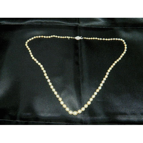 578 - Small string of cultured pearls with silver clasp [20 in length]...