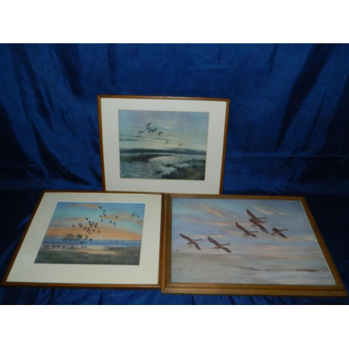 601 - 3 prints signed 'Peter Scott' of wildlife scenes and 'Peter Scott' unframed print of three swans...