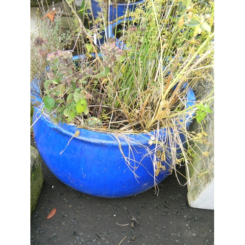 627 - Large Blue ceramic frost free planter with lavender plant...