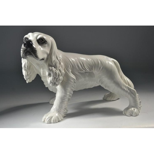 24 - Large ceramic spaniel (indistinct signature to base), a nice example sits approx 25cm high, 32cm lon...