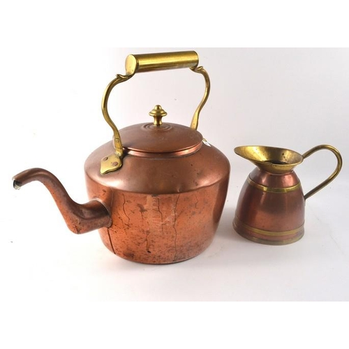 48 - A brass kettle and jug...