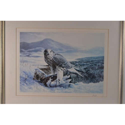 52 - Limited edition print (110/150) of bird of prey...