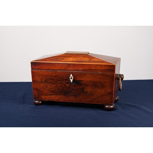 17 - REGENCY ROSEWOOD SARCOPHAGUS SHAPED TEA CADDY with wooden end ring handles, bun feet, the interior w...