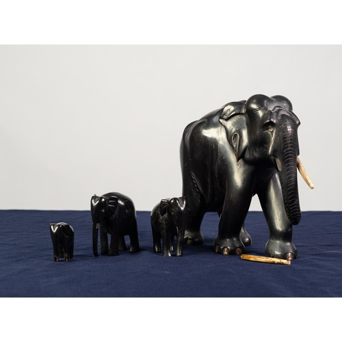 99 - EARLY 20th CENTURY INDIAN LARGE AND HEAVY CARVED EBONY ELEPHANT with ivory tusks, 8in (20.3cm) high ...