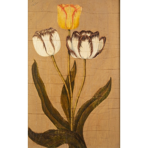 223 - BRITISH SCHOOL (19th Century) OIL ON PANEL Study of three tulips Unsigned 17 3/4 x 11 3/4in (45 x 30...