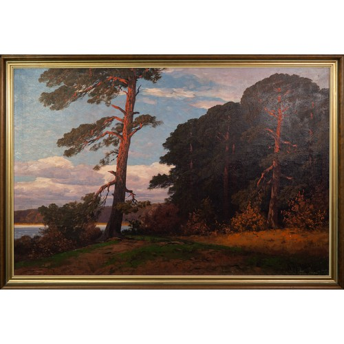 219 - N. HELLGREWE (Early 20th Century) OIL ON CANVAS Woodland landscape Signed lower right 31 x 47in (79 ...